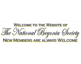 英国海棠协会 National Begonia Society