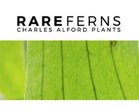 美国查尔斯·奥尔福德植物 Charles Alford Plants