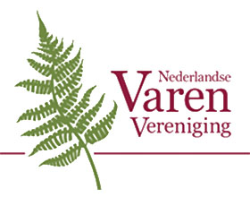 荷兰蕨类植物协会 Nederlandse Varenvereniging