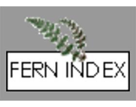 英国和爱尔兰的蕨类植物 Ferns in Britain and Ireland