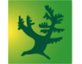 荷兰鹿特丹特伦堡公园和树木园 TROMPENBURG TUINEN & ARBORETU