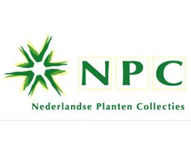 荷兰植物收藏中心 Nederlandse Planten collecties