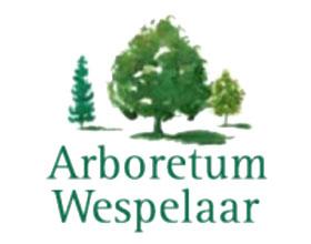 比利时韦斯普拉植物园 Arboretum Wespelaar