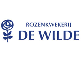 荷兰De Wilde玫瑰苗圃