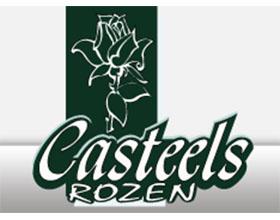 比利时Casteels Rozen玫瑰苗圃