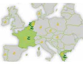 Covid-19新冠病毒打击欧盟的观赏园艺