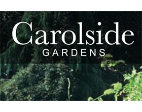 苏格兰卡罗赛德花园 Carolside Gardens