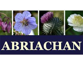 苏格兰ABRIACHAN 花园苗圃 ABRIACHAN GARDEN NURSERY