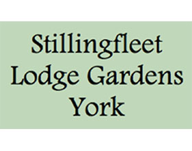 英国Stillingfleet Lodge花园和苗圃