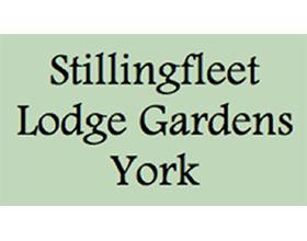 英国Stillingfleet Lodge花园和苗圃