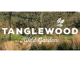 英国康沃尔野生花园 Tanglewood Wild Garden