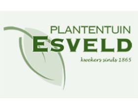 荷兰埃斯维尔德植物园 Plantentuin Esveld