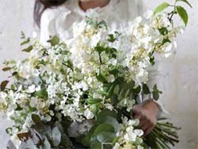 两个花卉市场的故事 A tale of two flower markets