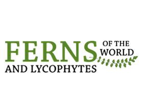 世界蕨类和苔藓植物 Ferns and Lycophytes of the World