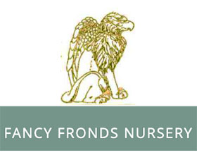 美国花式复叶苗圃 Fancy Fronds Nursery