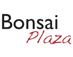 荷兰盆景广场 Bonsai Plaza