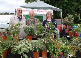 英国萨顿科尔菲尔德倒挂金钟协会 Sutton Coldfield Fuchsia Society