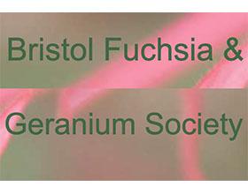英国布里斯托倒挂金钟和天竺葵协会 Bristol Fuchsia & Geranium Society