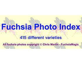 倒挂金钟图片库 Fuchsia Photo Index