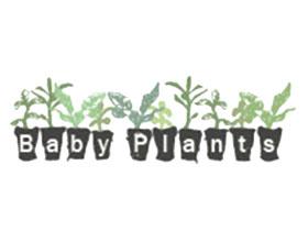 英国萨普科特花园中心BABY PLANTS网 Sapcote Garden Centre