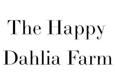 快乐大丽花农场 The Happy Dahlia Farm
