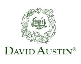 英国大卫·奥斯汀玫瑰 David Austin Roses