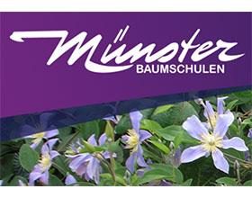 德国明斯特苗圃 Münster Baumschulen