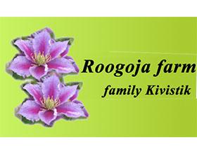爱沙尼亚Roogoja 农场 Roogoja farm