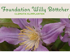 比利时威利·博彻铁线莲基金会 Foundation Willy Bottcher Clematis Klimplanten
