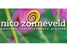 荷兰Nico Zonneveld苗圃