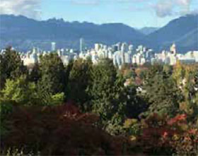 与苗圃合作将是一个有效的城市森林战略
