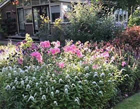 荷兰德格斯花园 Tuin de Geus