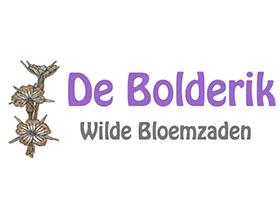 荷兰Bolderik 野花种子苗圃
