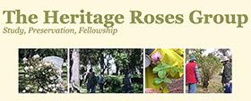 美国传统玫瑰小组 Heritage Roses Group