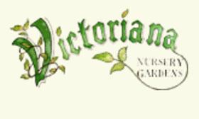 英国维多利亚苗圃花园 Victoriana Nursery Gardens