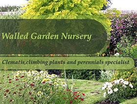 英国围墙花园苗圃 Walled Garden Nursery
