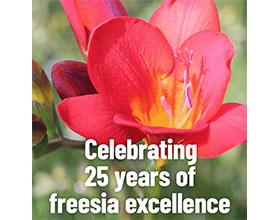 荷兰小苍兰种植者团体Unicum庆祝成立25周年