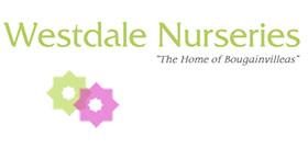 英国韦斯特代尔苗圃 Westdale Nurseries